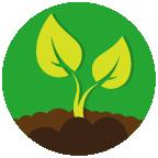 Arkansas School Garden Grant Program
